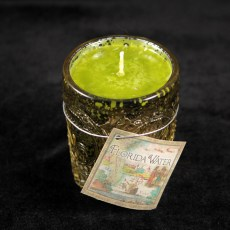 Forida Water Candle