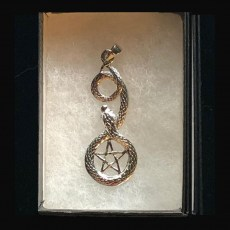 Charm - Silver Snake with Pentagram