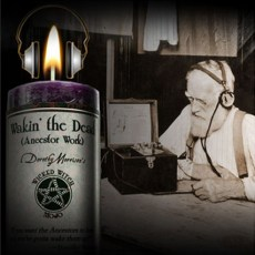 Wakin' the Dead - Wicked witch Mojo Candle